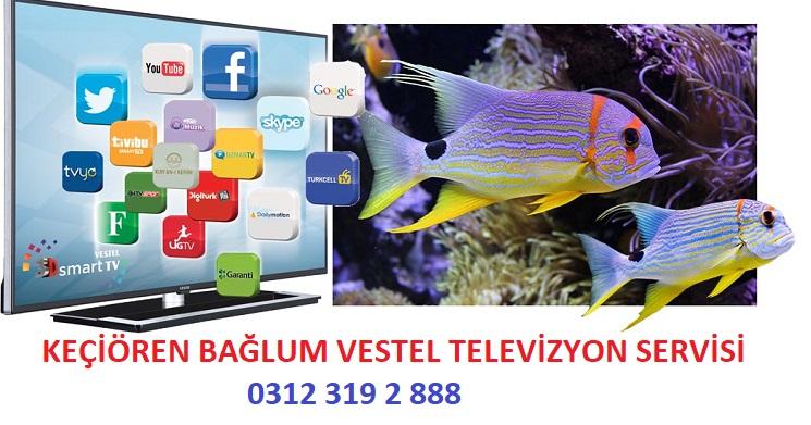 Ankara Bağlum Vestel Televizyon Servisi