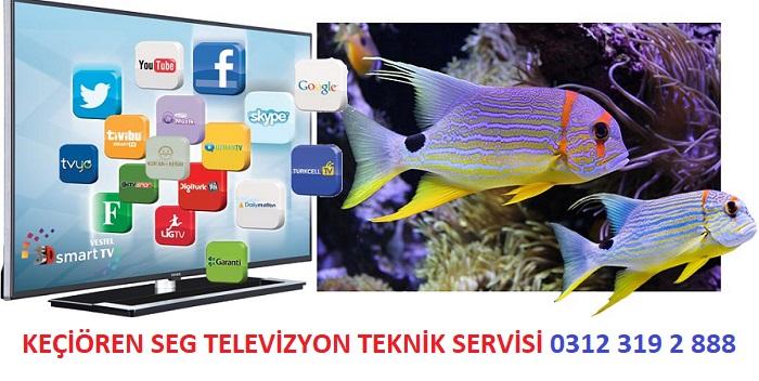 Ankara Keçiören Seg Televizyon Servisi, Keçiören Seg Servisi