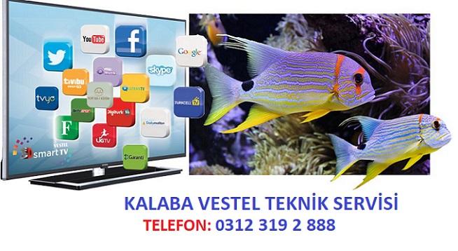 Kalaba Vestel Servisi, vestel televizyon servisi, vestel servisleri